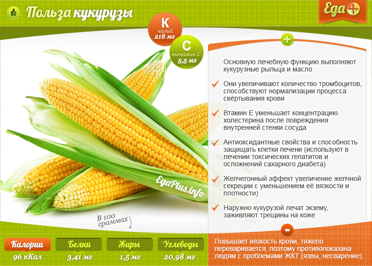 Полезна или вредна кукуруза, в чем ее полезные свойства