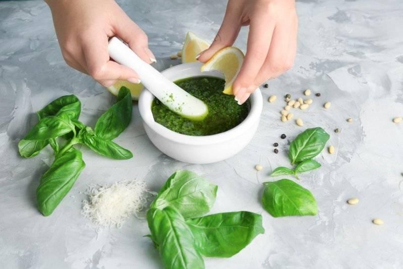 Польза и вред базилика для здоровья
