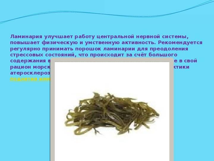 Польза морской капусты для организма женщин и мужчин – противопоказания