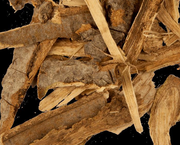 Осиновая кора. полезные свойства и противопоказания, применение