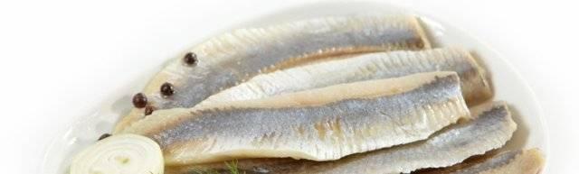 Селедка соленая польза и вред для организма