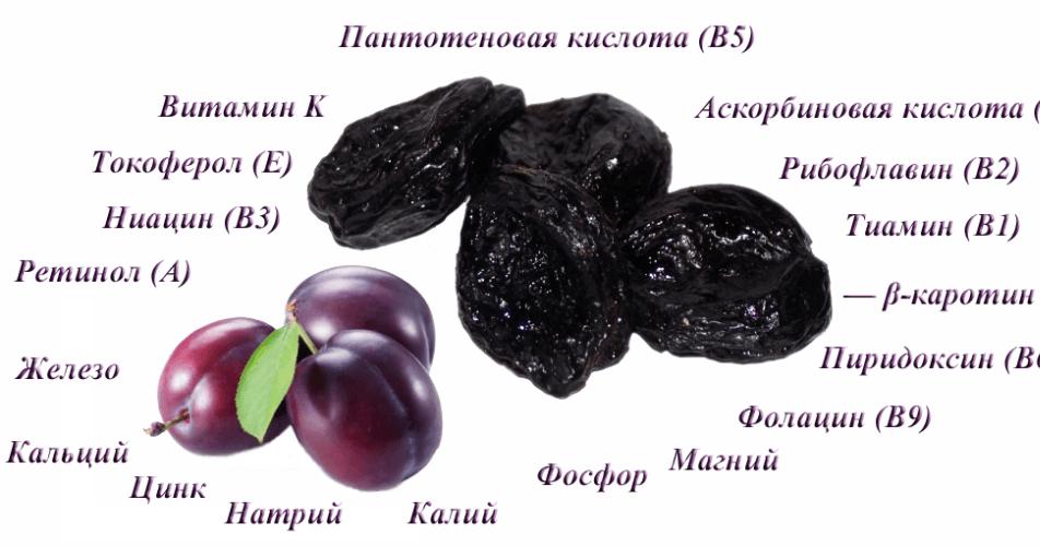 Чернослив — польза и вред для организма человека