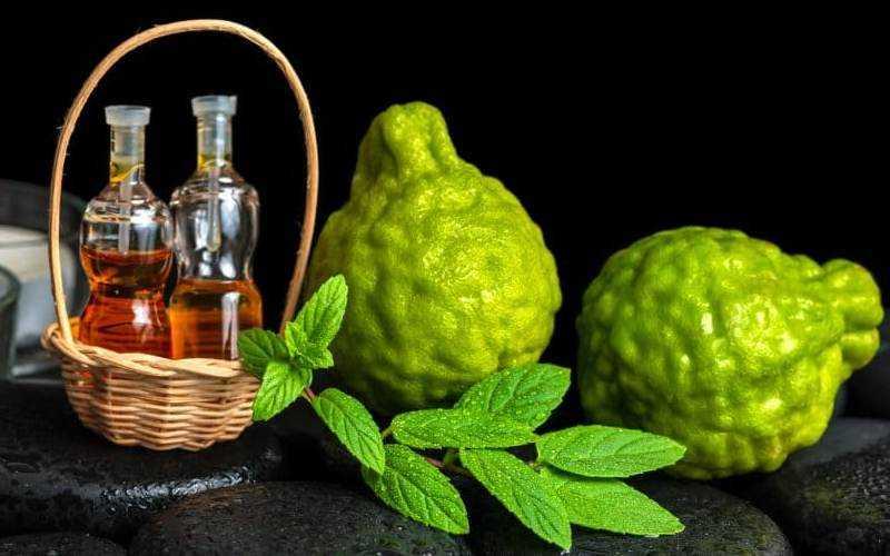 Чай с бергамотом и его полезные свойства