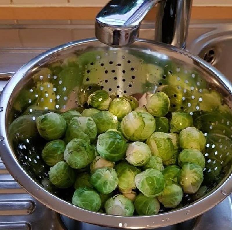 Польза и вред брюссельской капусты для организма. применение овоща