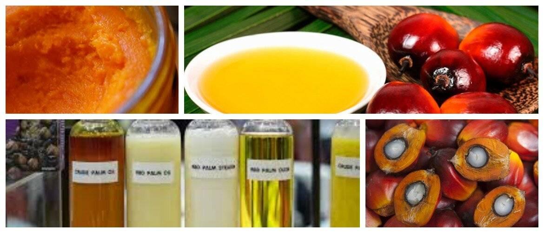 Стоит ли бояться пальмового масла