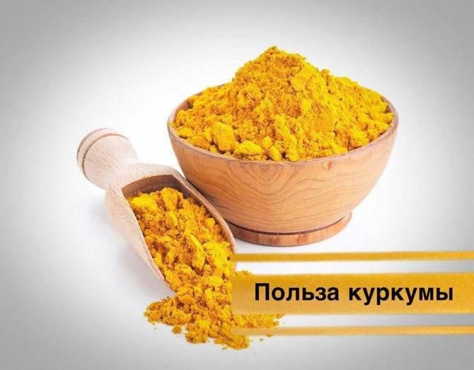 Состав куркумина, польза и вред для здоровья, как принимать