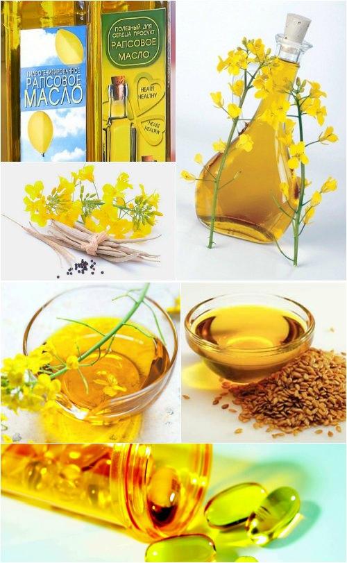 Рапсовое масло: польза и вред, как принимать
