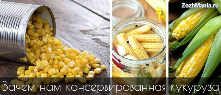 Консервированная кукуруза польза и вред