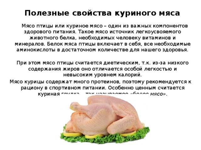 Польза или вред куриной грудки для организма
