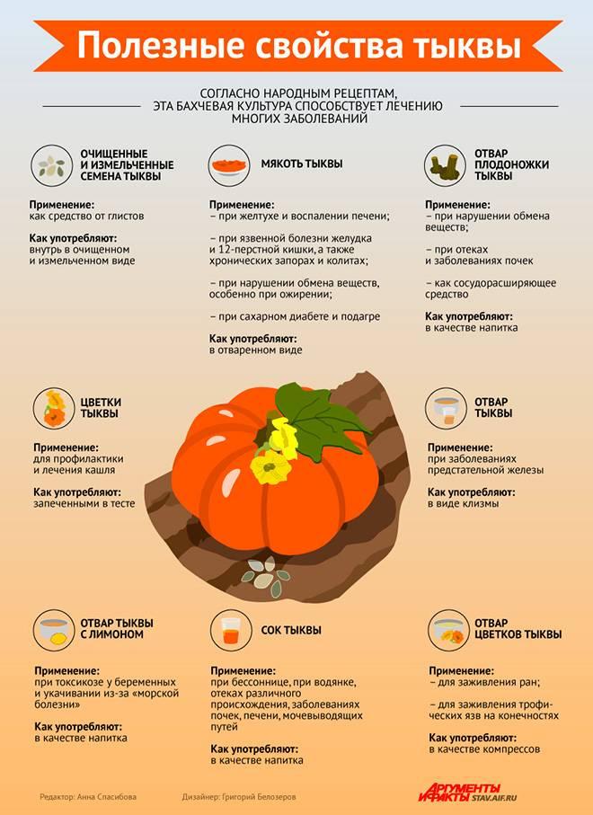 Польза тыквы для организма: польза, вред, лечебные свойства и особенности приготовления (120 фото)