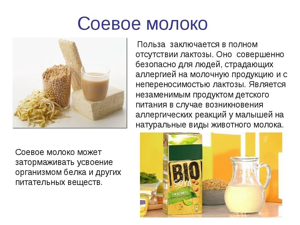 Молоко польза и вред для здоровья организма
