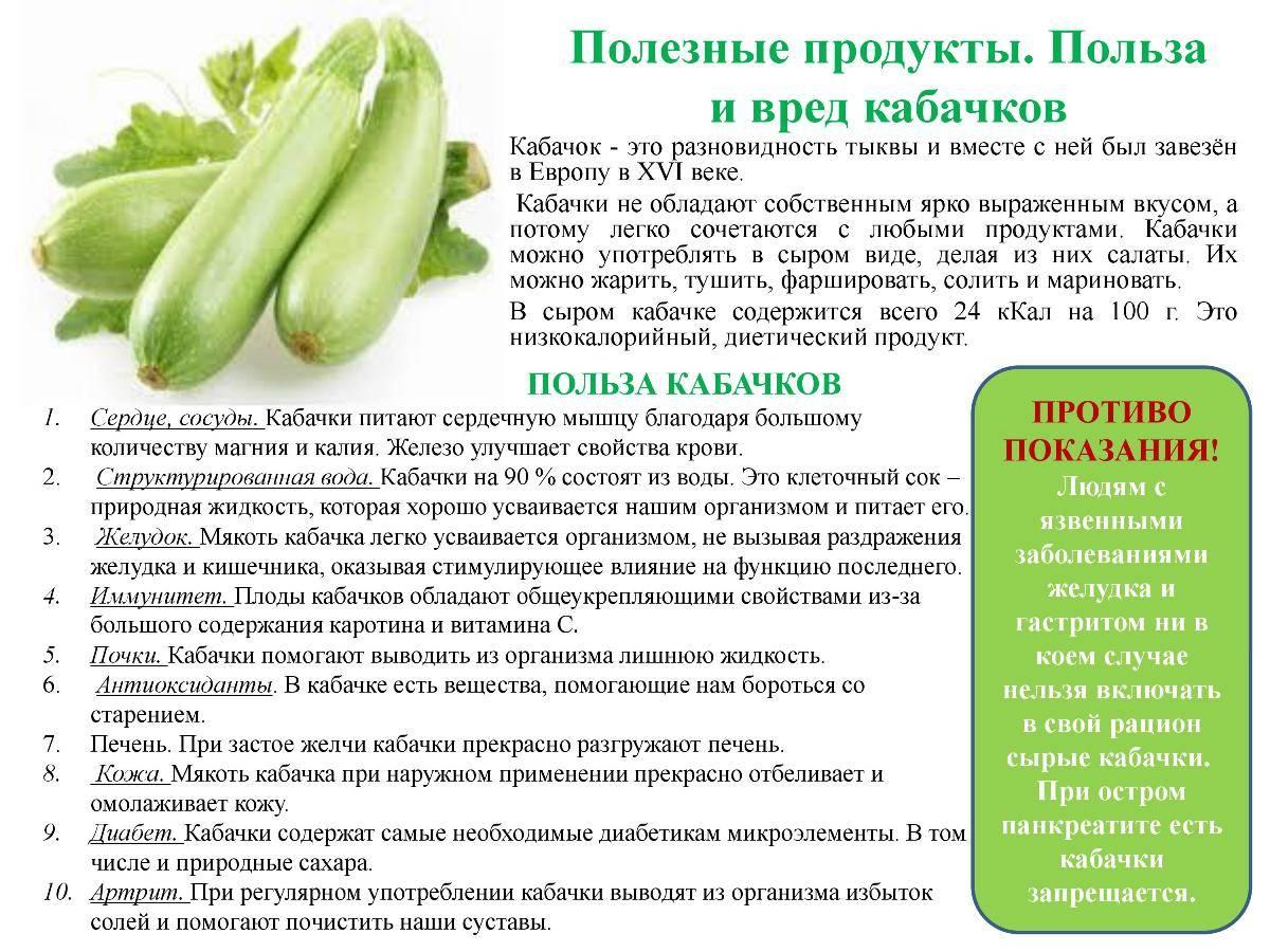 Чем полезны кабачки для организма
