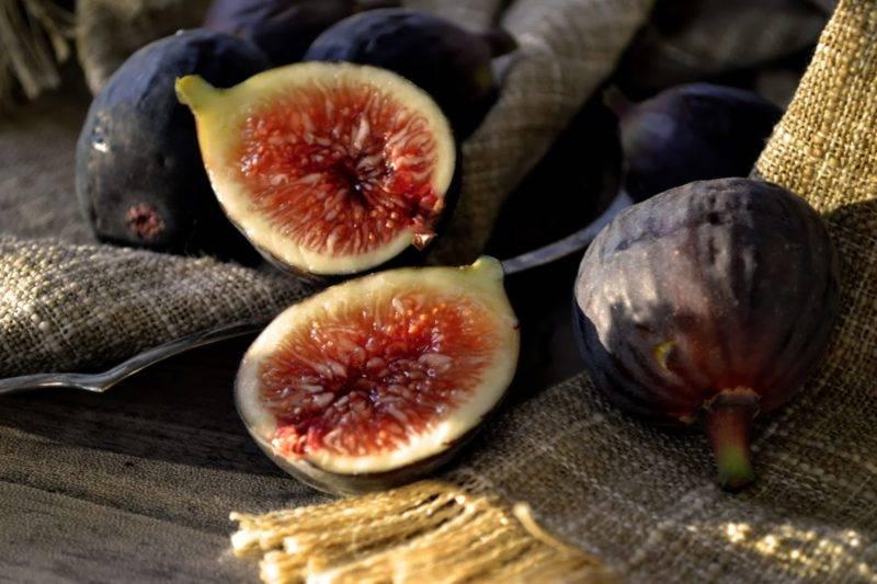 Польза и вред для организма свежего и сушеного инжира