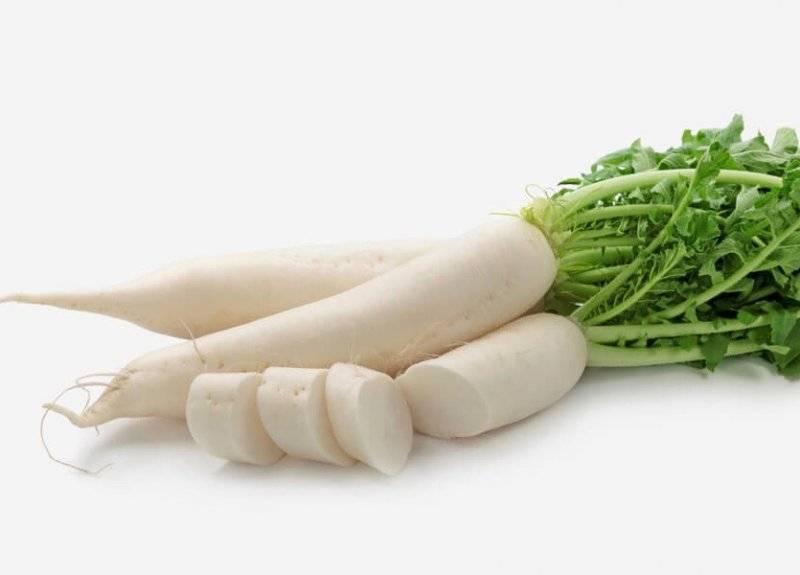 Дайкон — польза и вред для здоровья. использование в народной медицине, косметологии, кулинарии. рецепты приготовления