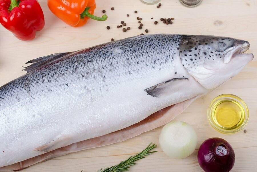 Драгоценный лосось — польза и состав, ценность красной рыбы. может ли быть вред от лосося на повседневном столе
