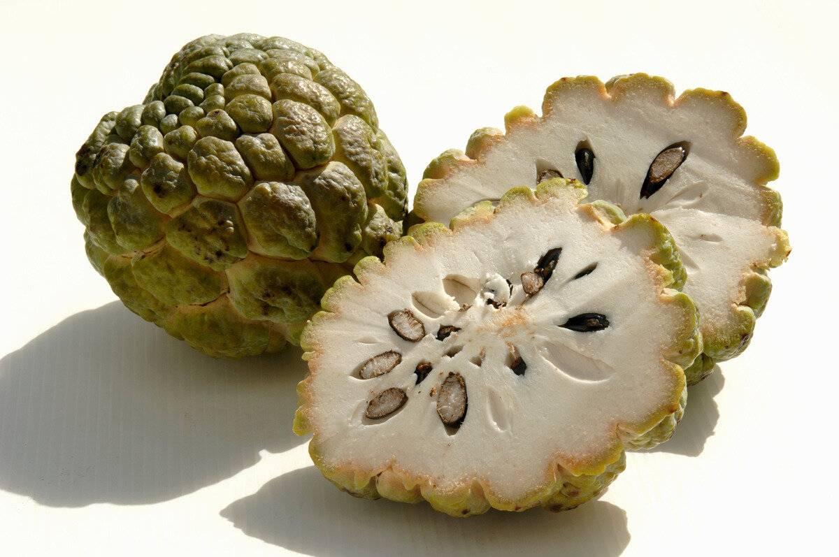Танжерин что это за фрукт — описание и полезные свойства цитруса