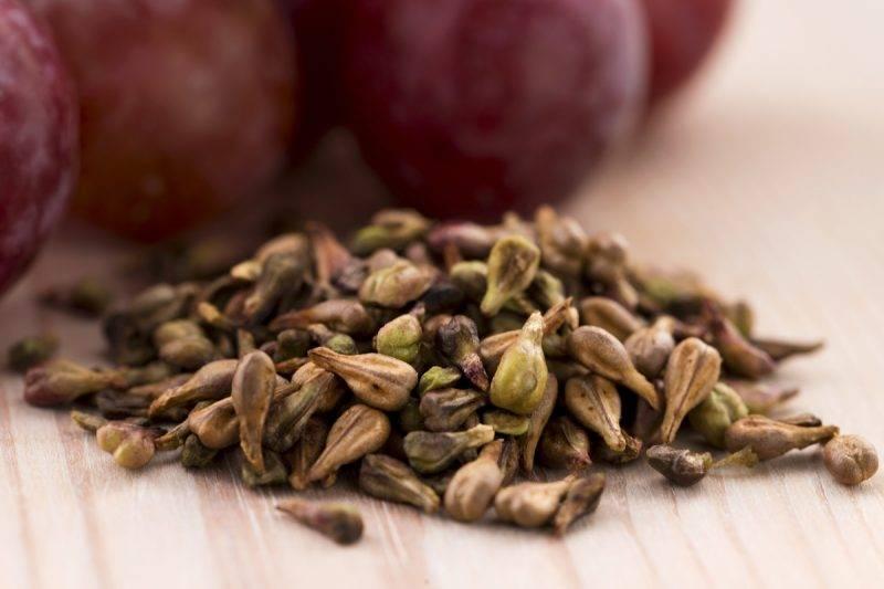 Применение и характеристика виноградной косточки