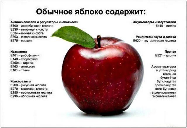 Семечки яблока польза и вред