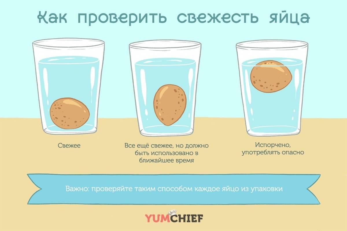 Как определить свежесть куриных яиц: 4 простых способа