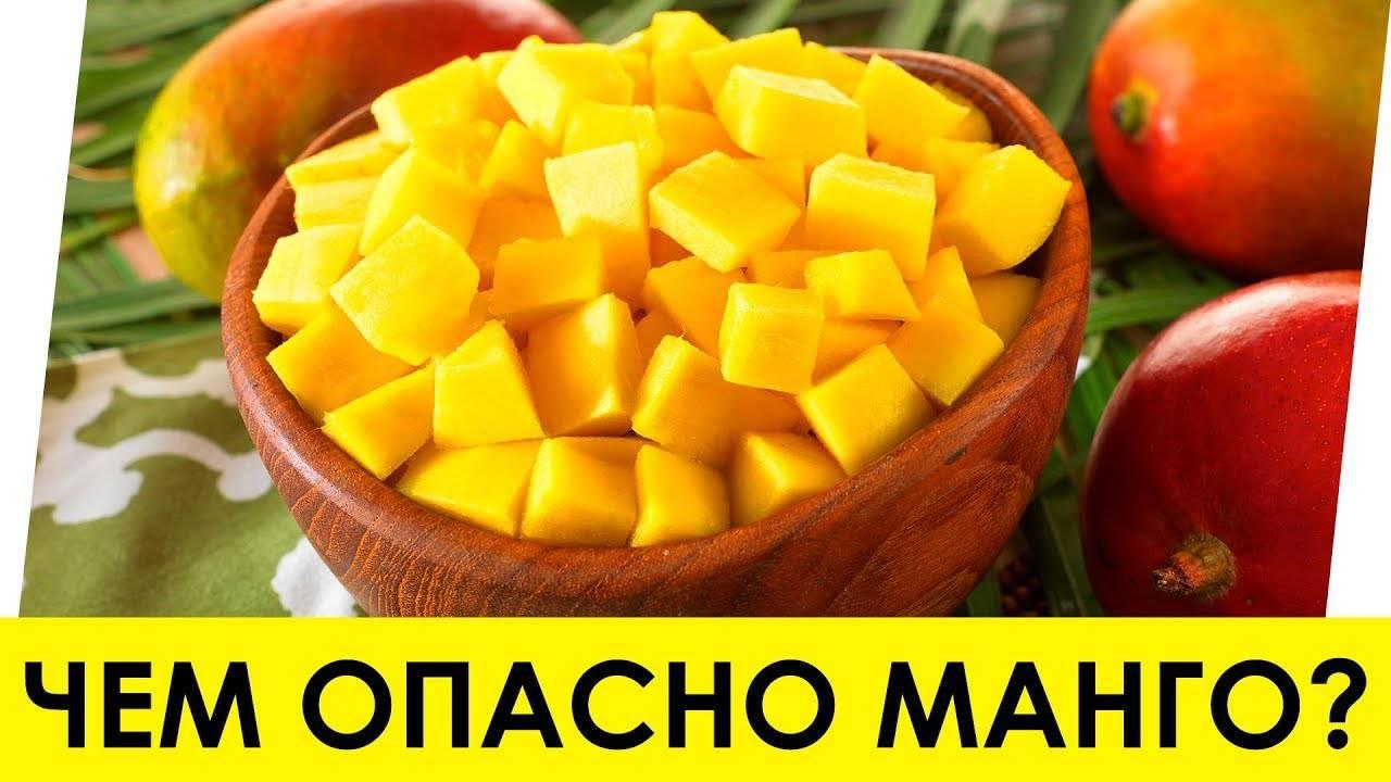 Экзотический фрукт манго: польза и вред для здоровья