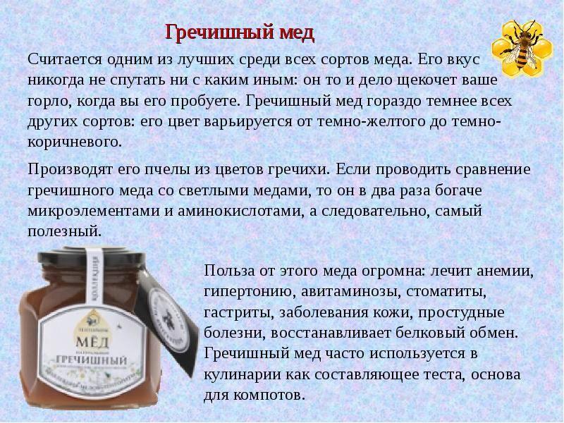 Гречишный мёд: польза и вред, как определить натуральность