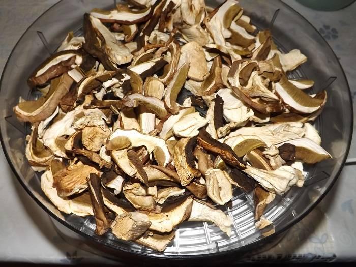 Настоящие грибники знают, как сушить грибы в домашних условиях