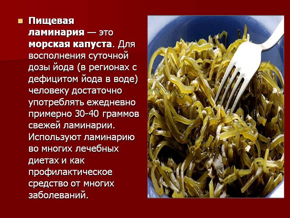 Морская капуста: польза и вред, лечебные свойства для мужчин и женщин