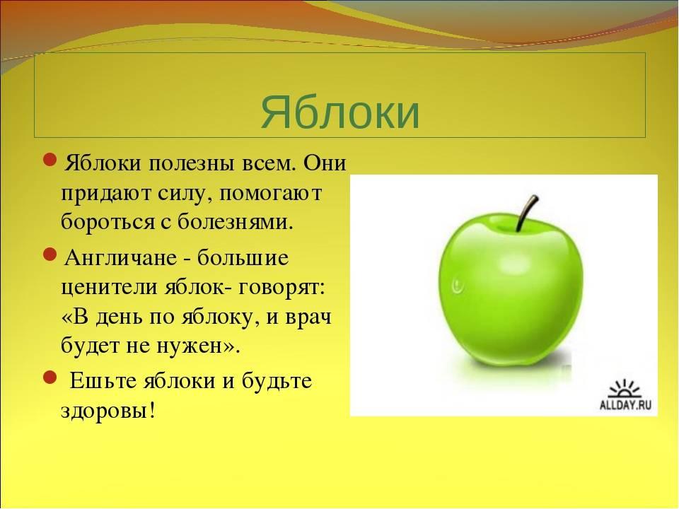 Польза яблок для организма — 12 фактов