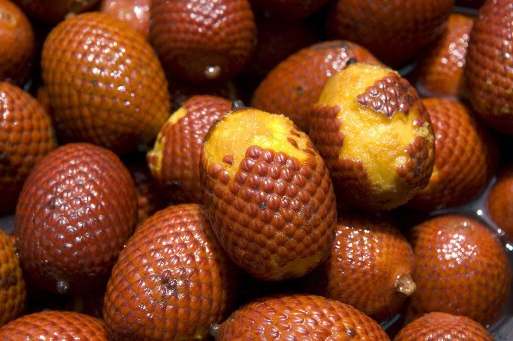 Кумкват – что это за фрукт и как его едят