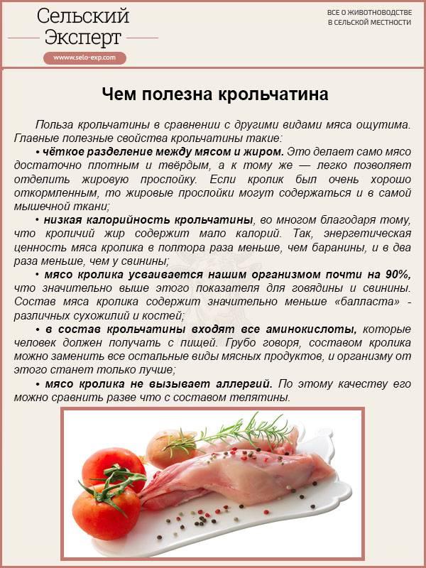 Мясо кролика: свойства, польза и вред