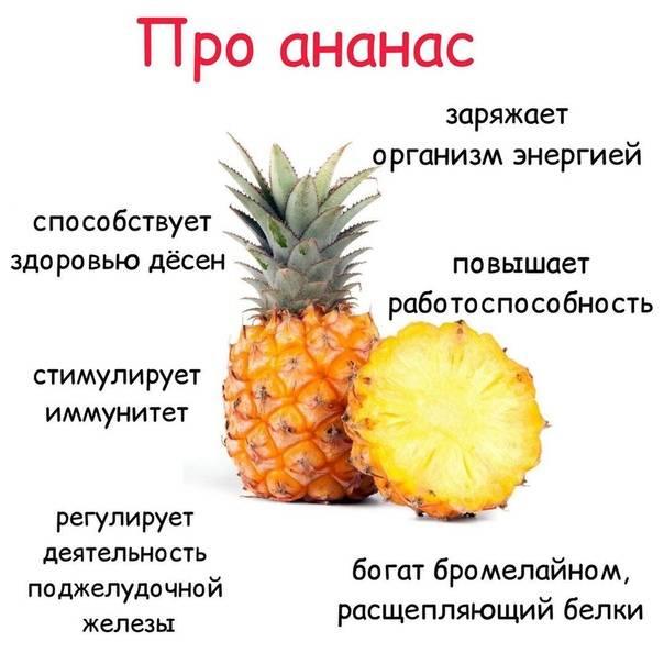 Польза и вред ананаса для здоровья человека?