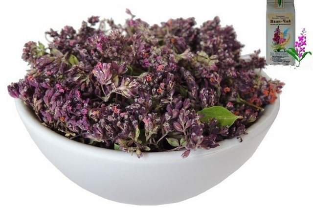 Чай майоран лечебные свойства