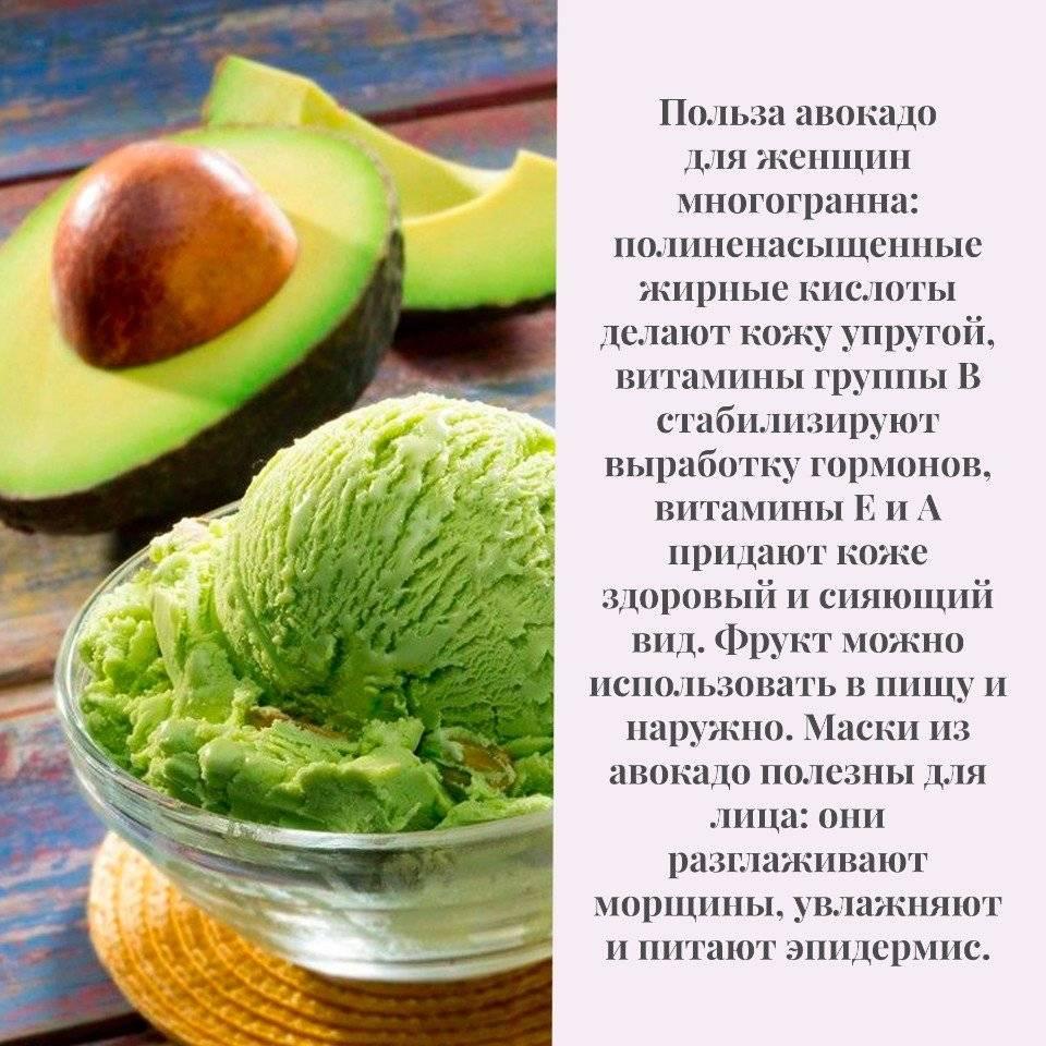 Авокадо, польза и вред для организма человека