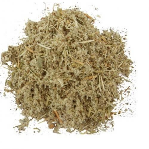 Лечебные свойства и противопоказания эрвы шерстистой, как использовать при камнях в почках