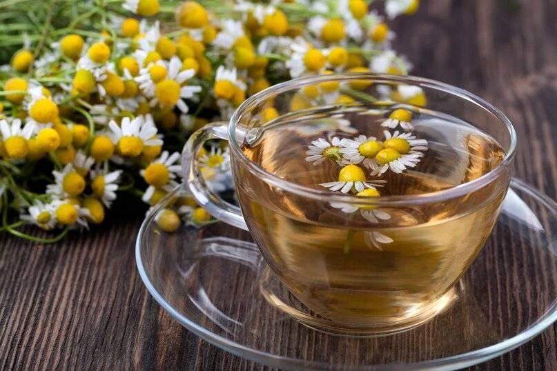 Как пить ромашковый чай с пользой?