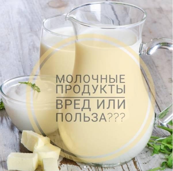 Молоко: полезные свойства и возможный вред