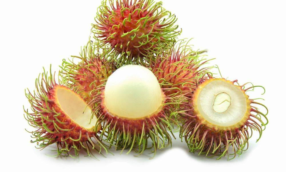 Рамбутан свойства: 120 фото и видео описание приготовления к употреблению. полезные свойства и вкус фрукта