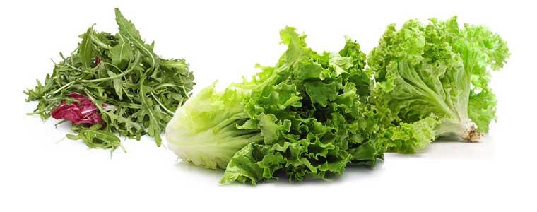 Огородный салат, польза и вред