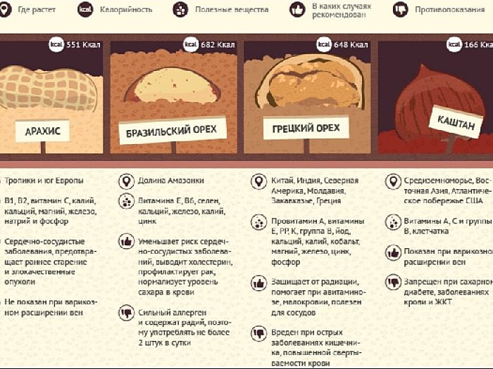 Чем бразильский орех может быть полезен для женщин