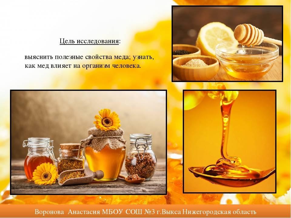 Польза меда для организма человека, как употреблять