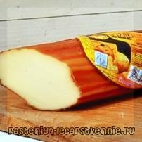 Что полезнее для человека сыр или колбаса