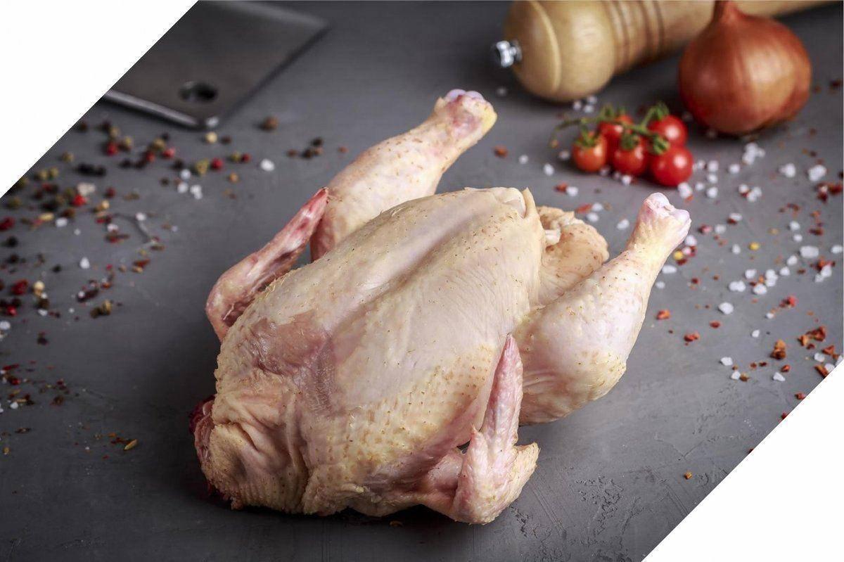 Индейка (мясо, печень, жир, яйца) — польза и вред для организма