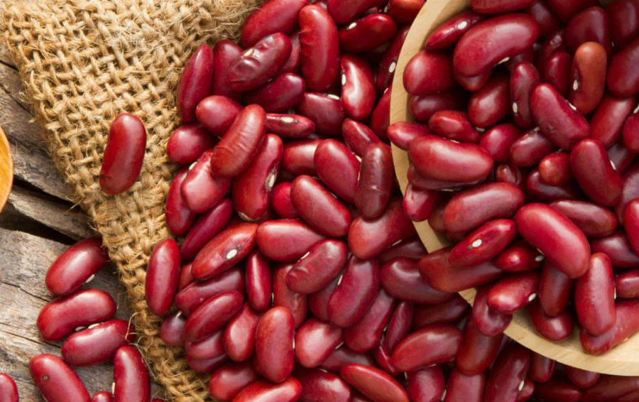 Красная фасоль: польза и вред, как готовить