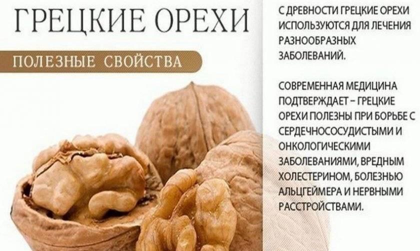"""""""грецкий орех: полезные свойства для организма и возможный вред"""""""