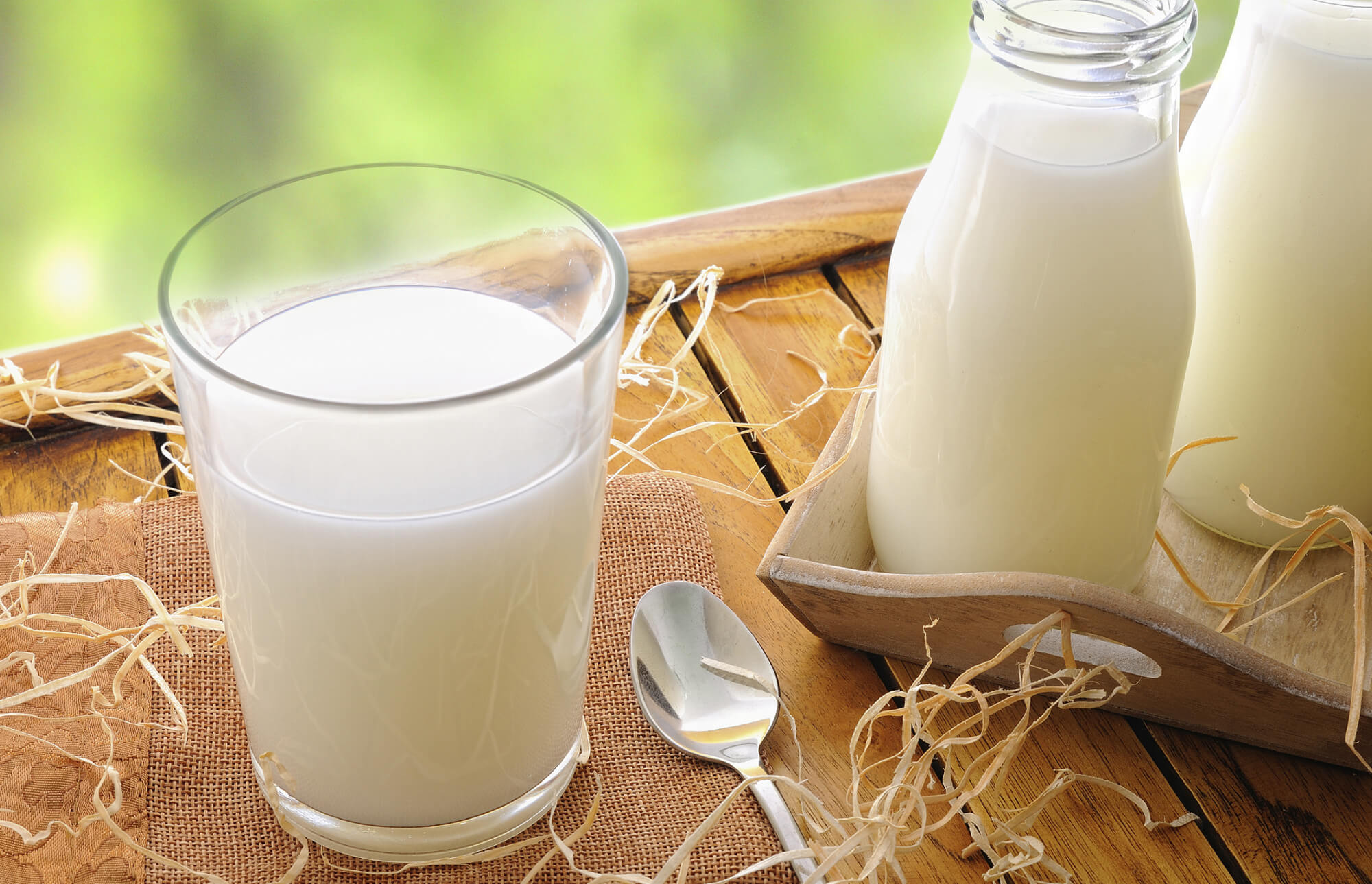 Польза козьего молока для взрослых и пожилых людей, можно ли его пить детям
