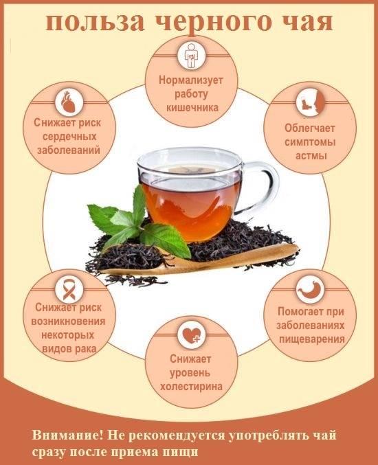 Чем вреден чай: 6 неожиданных выводов учёных