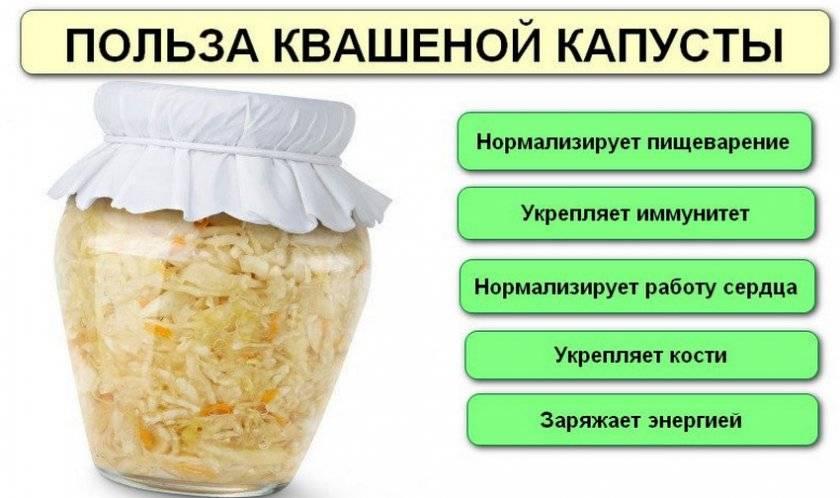 Польза и вред квашеной капусты для человека