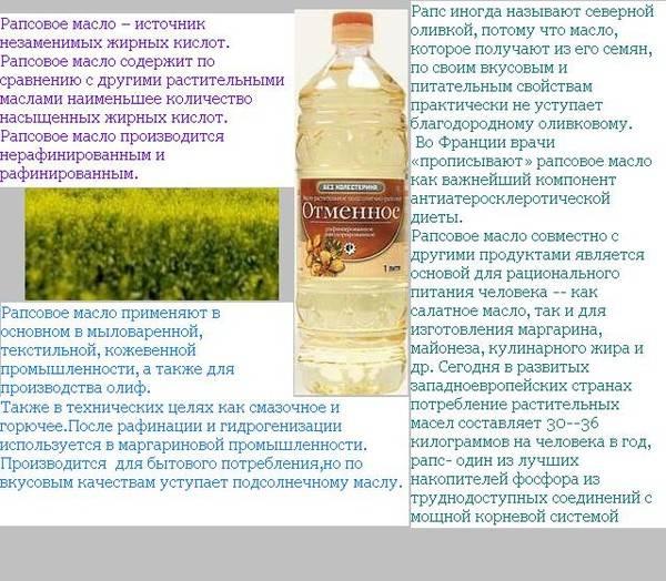 Рапсовое масло: польза и вред, особенности применения для взрослых и в детском питании, состав, противопоказания