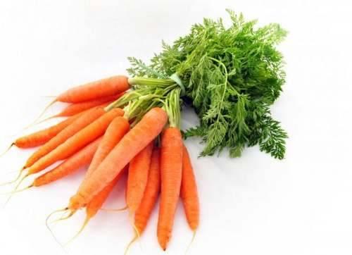 Морковная ботва – полезные свойства и противопоказания