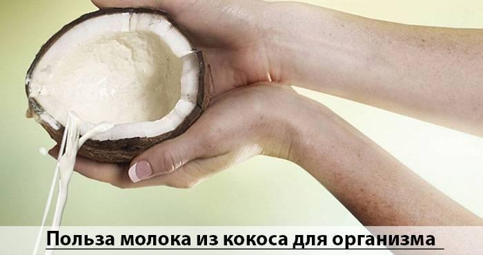 Кокосовое молоко: какое лучше?